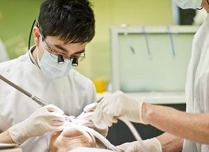 تحصیل دندانپزشکی در نیوزیلند