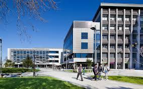 تحصیل پزشکی در نیوزیلند